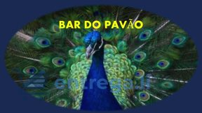 BAR DO PAVÃO
