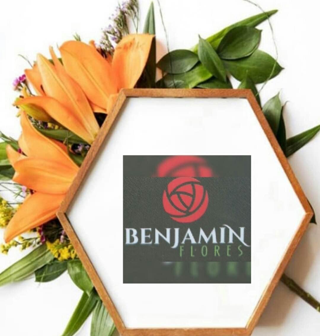 Benjamimflores